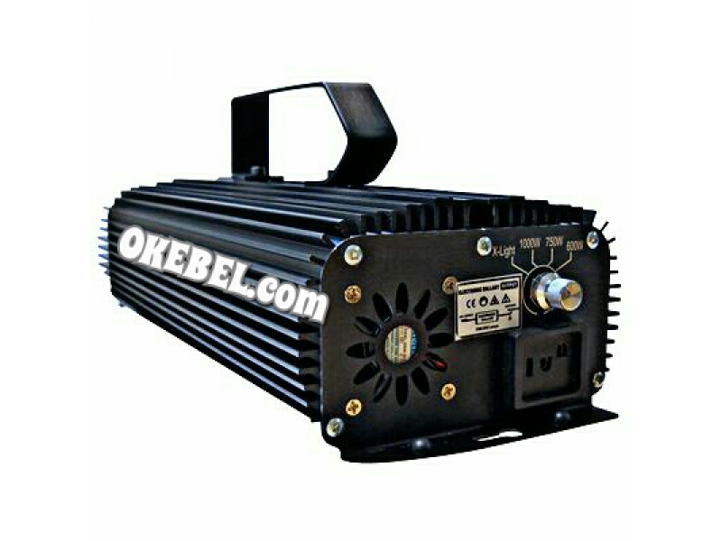 Lightspeed Digital 250W Ballast