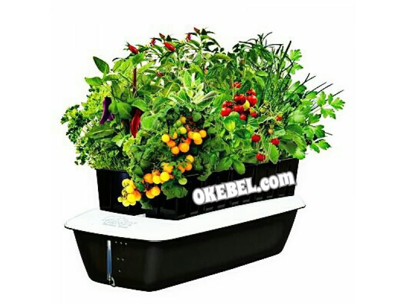Systeme Hydroponique Alfreds (Jardin de maison intérieur pour 10 plantes)