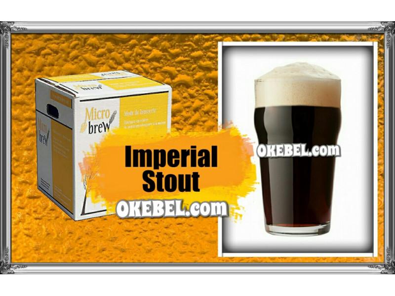Stout  -Micro Brew