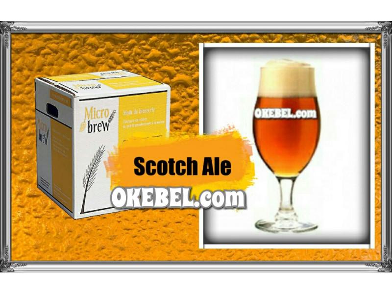 Scotch Ale  -Micro Brew