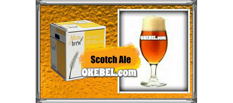 Bière Scotch Ale Beer